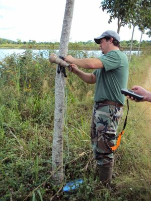 CMI researcher sets up a bat detector